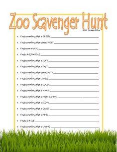 FREE Zoo Scavenger Hunt Water Games For Kids, Indoor Activities For Kids, Family Activities, Backyard For Kids, Backyard Games, Zoo Scavenger Hunts, Outdoor Dates, Read Sign, Teacher Pay Teachers