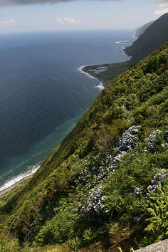 Beautiful Azores - Cliff at the island Sao Jorge