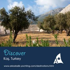 The well-preserved Hellenistic amphitheatre sits in an olive grove on the west side of town.