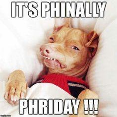 Phriday!