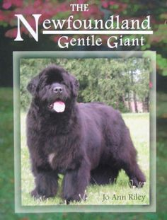 THIS BOOK WILL BE AVAILABLE TO SHIP BY MAY 8TH In The Newfoundland: Gentle Giant, JoAnn Riley presents many informative Newfoundland dog facts, ranging from selecting a Newfoundland puppy to caring fo
