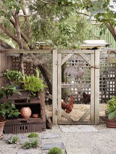Chicken Coop Ideas 16747829853940382 - Mariana Garcia-Katz & Family — The Design Files Chicken Coop Decor, Cheap Chicken Coops, Chicken Coup, Chicken Garden, Chicken Pen, Chicken Coop Designs, Backyard Chicken Coops, Veg Garden, Chickens Backyard