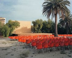 Photo by Wim Wenders of open air screen in Palermo 2007.