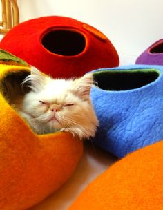 felted cat houses