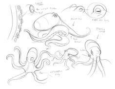 octopus drawing tutorial - Pesquisa Google