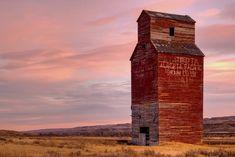 *🇨🇦 Old grain elevator at sunset (Dorothy, Alberta) by bonedad 🌾 [photo was taken in Old Abandoned Buildings, Old Buildings, Country Barns, Old Barns, Canola Field, Grain Storage, Grain Silo, Model Train Layouts, Farm Yard