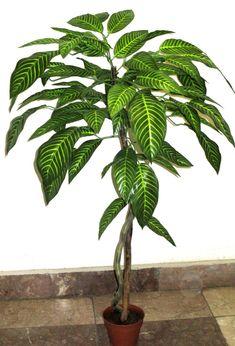 90 cm-es dekorációs fa Plant Leaves, Plants, Plant, Planets