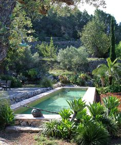 Piscine dans un petit jardin : idées et inspirations The small space is underlined by the importance of plants for an intimate pool area Outdoor Pool, Outdoor Gardens, Small Pools, Beautiful Pools, Dream Pools, Swimming Pool Designs, Cool Pools, Best Pools, Small Gardens