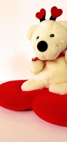 Valentine Wallpaper, Wallpaper Backgrounds, Teddy Bear, Toys, Animals, Activity Toys, Animaux, Animal, Animales