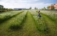 Montevrain_Park-Urbicus_landscape_architecture-09 «architecture du paysage Travaux | Landezine