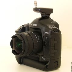 Canon EOS 1D mark II Tokina AT-X 107 10-17mm f/3.5-4.5 fisheye DX (if)