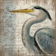 Found it at Wayfair - Suzanne Nicoll Blue Heron Graphic Art Plaque Beach Cottage Style, Beach Cottage Decor, Coastal Decor, Tropical Decor, Seaside Decor, Lake Cottage, Coastal Homes, Art And Illustration, Funny Bird