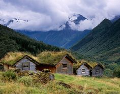 Scenic Norwegian green roof cottages