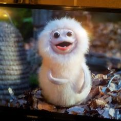 The cutest thing on Yonderland ever! Well maybe next to the boys ;)