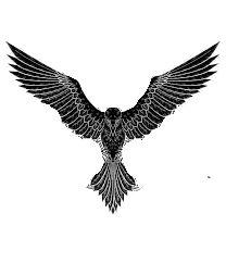 Crow Tattoo Design, Bird Tattoo Men, Tattoo Design Drawings, Tattoo Sketches, Tattoo Designs Men, Eagle Tattoos, Leg Tattoos, Body Art Tattoos, Small Tattoos