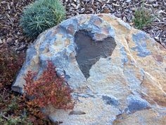Natural heart in stone-❤️