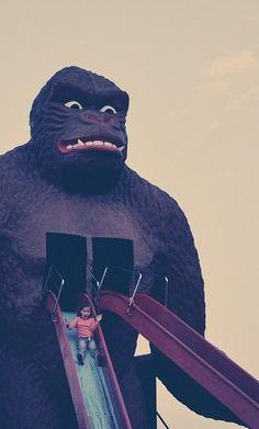 gorilla slider