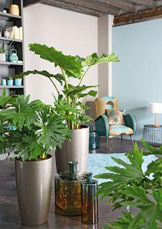 Jouez avec des cache-pots pour une belle #décoration !
