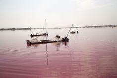 Ällistyttävän ihanat maisemat: 9 pinkkiä järveä