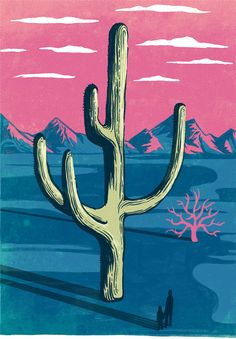 The saguaro (/səˈwɑroʊ/; scientific name Carnegiea gigantea) is an arborescent (tree-like) cactus species in the monotypic genusCarnegiea, which can grow to be over 20 meters (~70 ft) tall. It is native to the Sonoran Desert in the U.S. state of Arizona, …