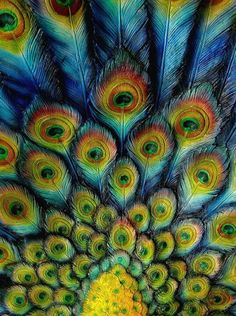 Love the impressionistic interpretation of these peacock feathers!