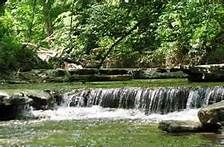 Indiana state parks:  Source of Hoosier Pride!