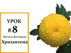 Хризантема мастер класс, Фоамиран цветы, Мастер класс из фоамирана