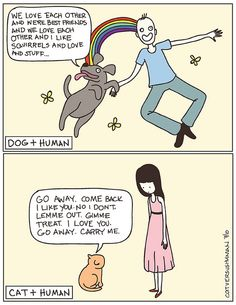 Cats and dogs.