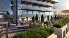 AYC Condos and Towns | Pre-Construction | Toronto | Condosky Realty