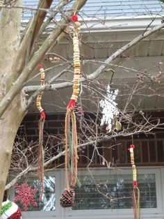 5 Homemade Ornament Ideas for Outdoor Trees