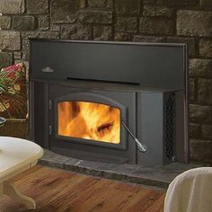 wood stove inserts for fireplaces | Wood Burning Fireplace Inserts Reviews – Napoleon 1402P Fireplace