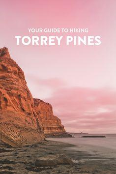 Torrey Pines Hike, La Jolla - Easy Hikes in San Diego with Beautiful Coastal Views La Jolla California, Visit California, California Travel, Southern California, Central California, Torrey Pines Hike, Torrey Pines State Reserve, San Diego Hiking, San Diego Travel