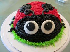 Lady Bug Cake. First birthday?