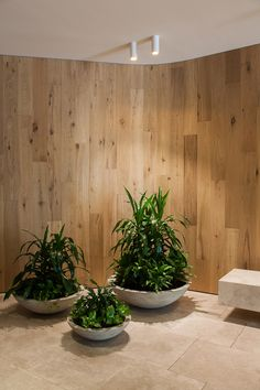 Genesin Studio have used White Smoked American Oak timber floorboards on the walls at Terrace Towers entrance. www.royaloakfloors.com.au