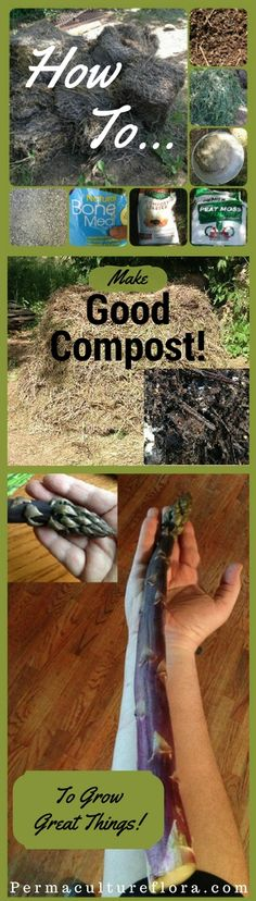 How to make Good Compost to grow great things!  The thing to remember about compost is that it can be made from whatever organic materials you have lying around. You should also always try to get as much biodiversity in your compost as possible. I can show you how!  By using Greens and browns, a Compost Activator. I'll show you how to build your Compost pile, and making your own Compost Starter. Adding Humic Acid, rock dust, Basalt, and Bat Guano to create amazing Soil Health.