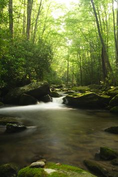 Peaceful scene in the Smoky Mountains