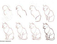 Рисунки котов карандашом прикольные