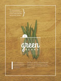 Magazine Photo spread by Catrina Silveira, via Behance