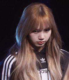 Kpop Girl Groups, Korean Girl Groups, Kpop Girls, Jennie Lisa, Blackpink Lisa, Lisa Black Pink, Lisa Blackpink Wallpaper, Blackpink Memes, Blackpink Fashion