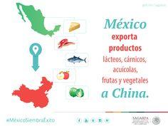 México exporta productos lácteos,cárnicos , acuícolas, frutas y vegetales a China. #MéxicoSiembraÉxito