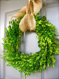 18 Preserved Boxwood Wreaths Perfect for by TheLaurenCollection
