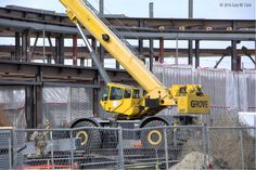 Crane is sitting in front of the future main entrance of the new Wichita Library, Dec 15, 2016. Wichita, Kansas