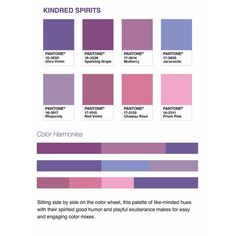 Now that Pantone's 2018 Ultra Violet 18-3838 has been announced as the color of the year. Here are some palettes produced from Pantone to help inspire your application of this beautiful color. 3 of 8  .  .  .  .  .  #pantone #pantonecoloroftheyear #coloroftheyear #colorinspiration #colorpalette #color #fallcolor #springcolor #2018coloroftheyear #lareps #colorforecast