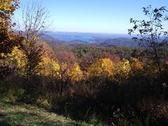Fall, near the Watershed en route to Saluda, North Carolina