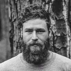 Barba y Piel seca, ¿qué aceite es mejor para mí?                              …