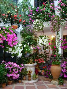Thrilling About Container Gardening Ideas. Amazing All About Container Gardening Ideas. Love Garden, Dream Garden, Container Plants, Container Gardening, Gardening Tools, Container Flowers, Organic Gardening, Pot Plante, Garden Planters