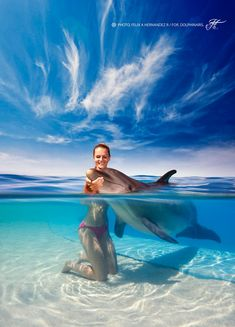 Brilliant Underwater Photo Composites Show Dolphins in Action