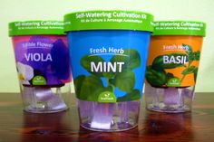Leafresh Self-Watering Cultivation Kit