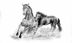 Graphite pencils, this piece is still part of my unsold collection! If you are interested in purchasing it, or to request your own personal piece, please contact abigail.rose06@gmail.com or visit www.facebook.com/abigailrose.equineart