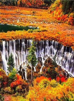 ✯ Jiǔzhàigōu, China.I want to go here one day.Please check out my website thanks. www.photopix.co.nz